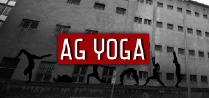 rs14-cat-yoga